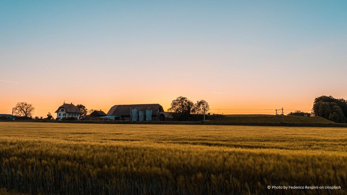 Bauernhaus umbauen - ein Traum von vielen